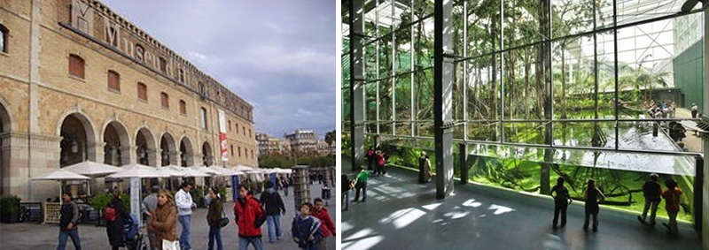 The façade of the museum of history of catalonia and the interior of Cosmo Caixa musem, both in Barcelona.