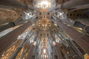 view of the interior ceiling in sagrada familia