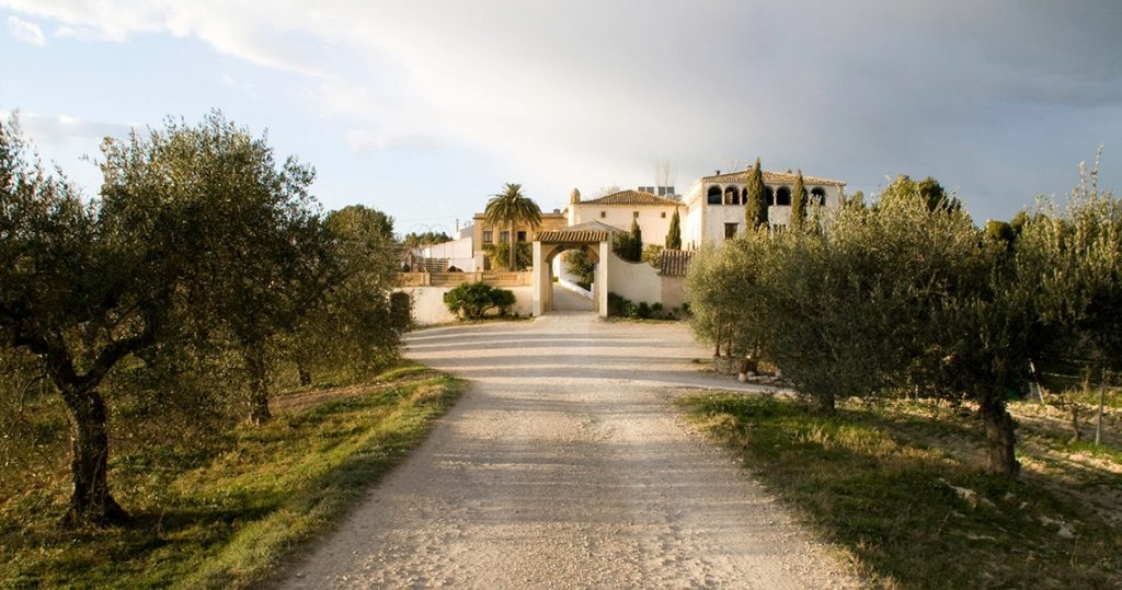 Traditional winery with olive trees in Catalan countryside.
